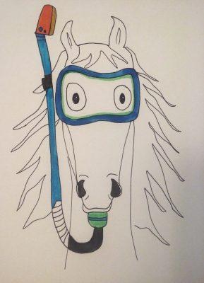 caballo snorkel edited